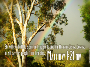 Matthew-1-21[fusion_builder_container hundred_percent=