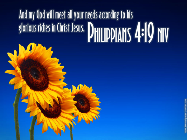 Philippians-4-19-Scripture-Flower-HD-Wallpaper[fusion_builder_container hundred_percent=